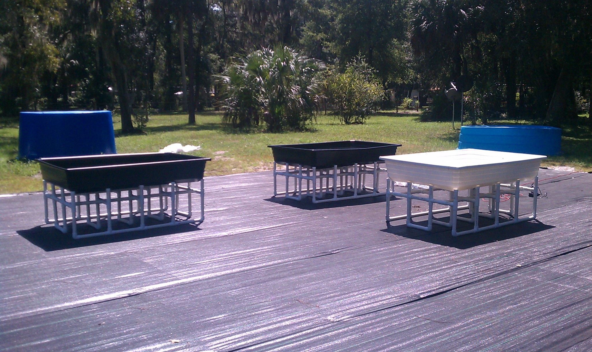 Our new aquaponics grow bed systems easyponixeasyponix for Hydroponic grow bed
